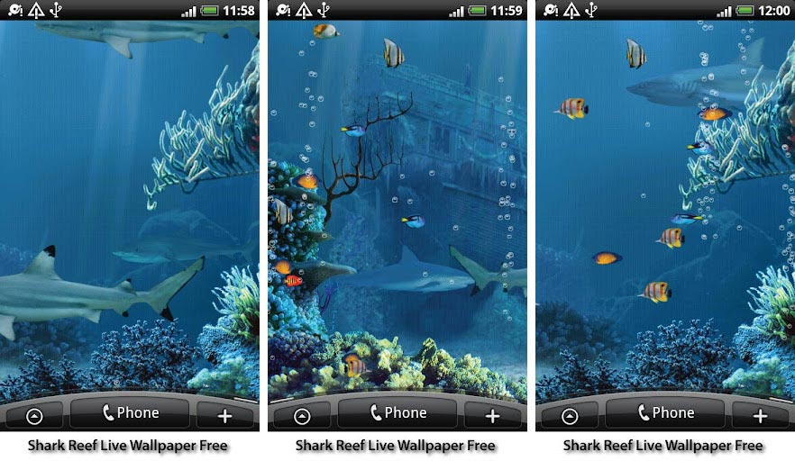 Sharks 3d Live Wallpaper And Screensaver Best Aquarium And Fish Live Wallpapers For Android