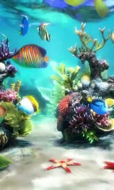 Aquarium Wallpaper For Android   MEJOR CONJUNTO DE FRASES