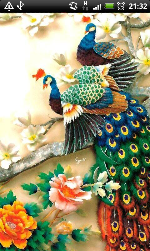 3d Birds Live Wallpaper Apk Colorful Peacock Live Wallpaper Android App Apk By