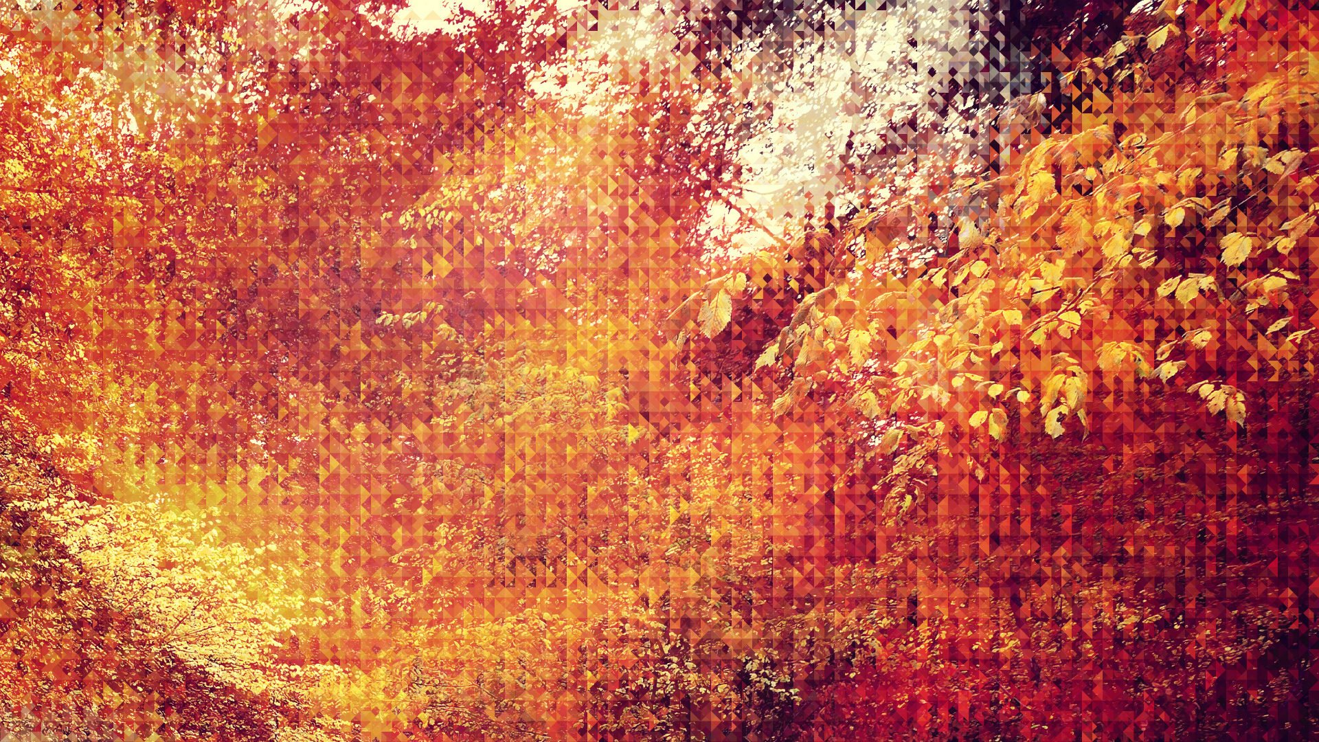 Fall Leaf Wallpaper For Mobile Android World Android World Update 20 Autumn Wallpapers
