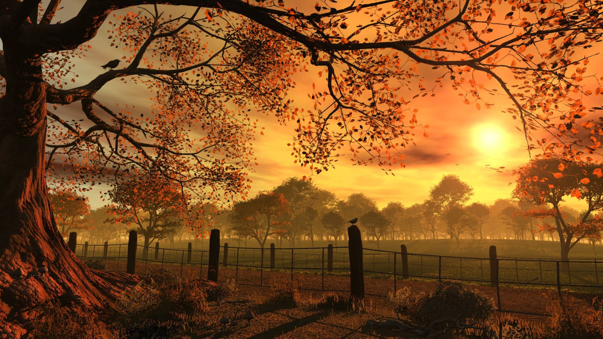 Falling Leaves Wallpaper Screensavers Sit Back And Relax With These Sunset Wallpapers