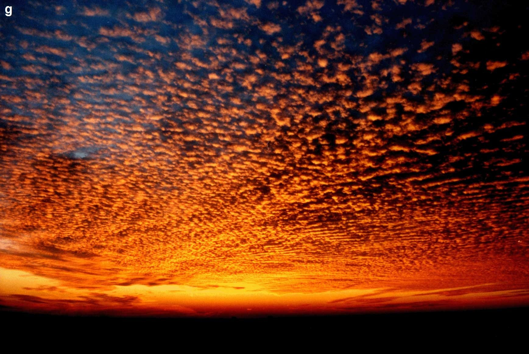 Free Fall Hp Widescreen Wallpapers 29 Amazing Hd And Qhd Sunset Wallpapers