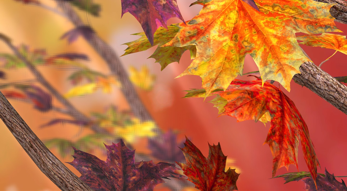 Birch Tree Fall Wallpaper Top 11 Autumn Live Wallpapers For Android