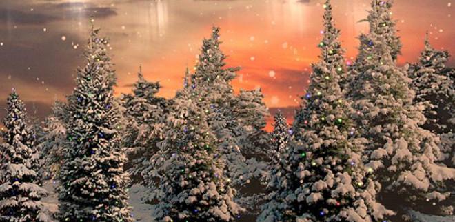 snowfall_main