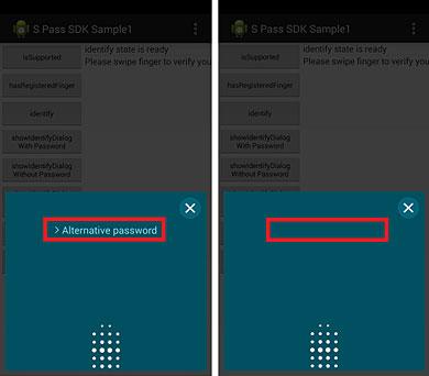Die Entwickler können entscheiden, ob die Eingabe eines alternativen Passworts möglich ist. (Foto: Samsung Developer)
