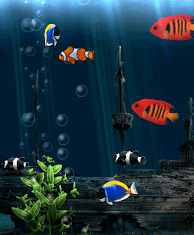Aquarium 3d Live Wallpaper Pro Tapety Ryby Android