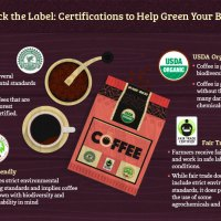 12 Tiny Steps To Make Your Daily Coffee a More Eco-Friendly Experience