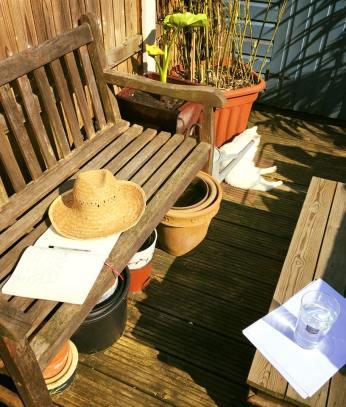 garden ans sun