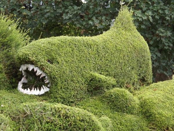 Shark hedge