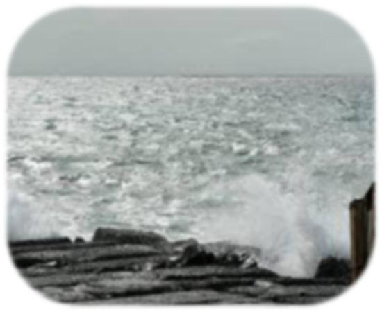 imagesblackandwhiteocean