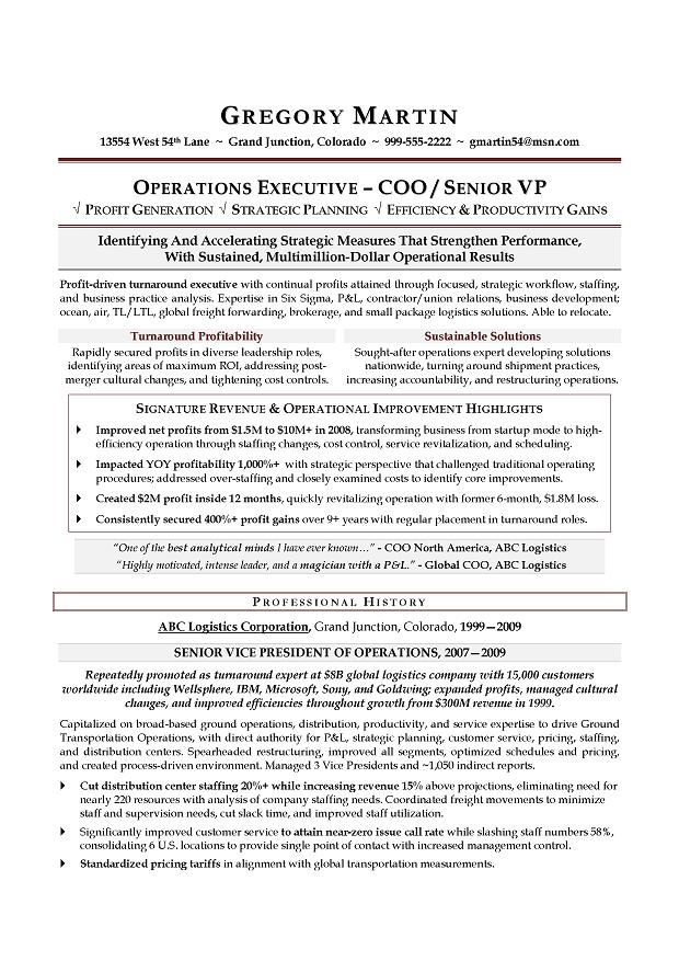 VP Operations  COO Sample Resume; Executive resume writer - freight broker sample resume