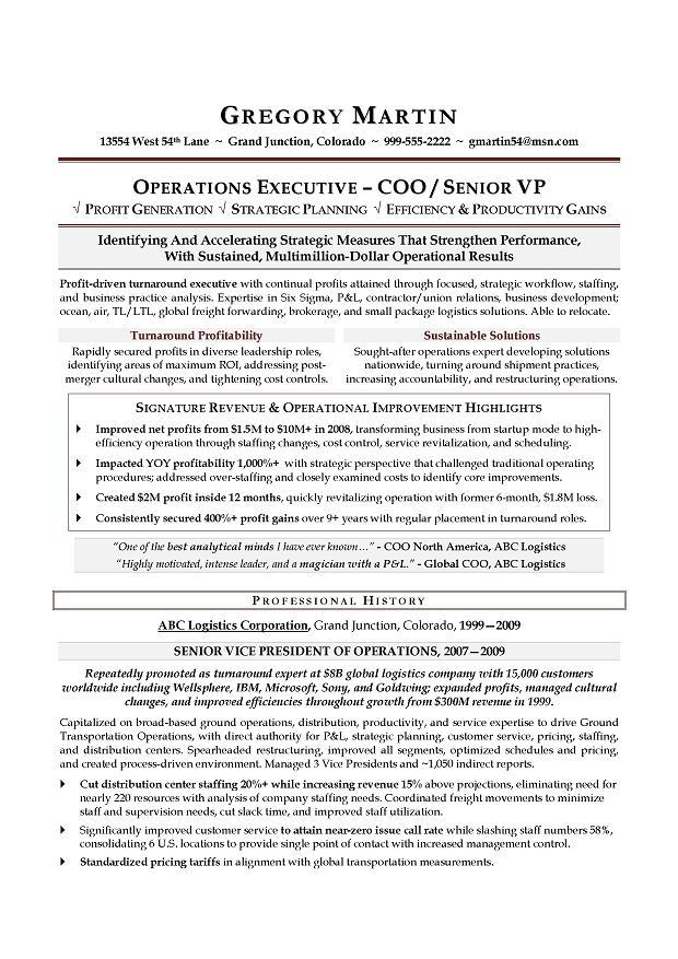 10 vice president of operations resume samples jobherojobhero
