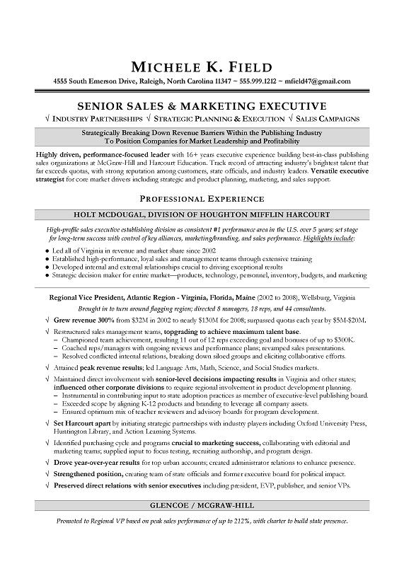 Regional VP Sales Sample Resume - Executive resume writing - Sales