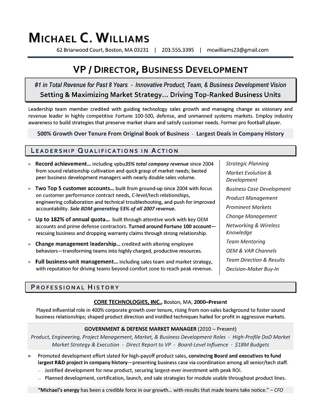 VP Business Development Sample Resume Executive Resume Writing - sample business resume