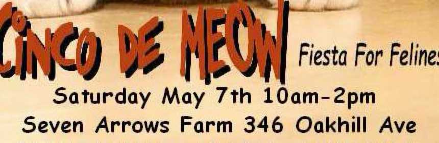 Cinco de Meow 2016 Featured