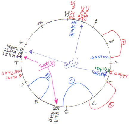 Paper On Astrology Of Homosexualitychinese Astrology Chart Elegant 9