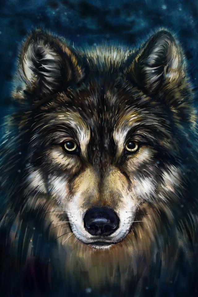 Native American Wallpaper Iphone Fond D Ecran Gratuit Loup Indien
