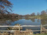 Furnace Brook Fishery | Sussex Coarse Angling | Anglers ...