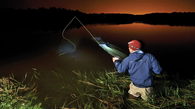 Magic Hatch Fishing for striped bass in Rhode Island - Anglers