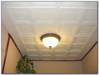 Painting Drop Down Ceiling Tiles Download Page  Home ...