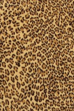 Leopard Print Wallpaper Iphone Wallpaper 106