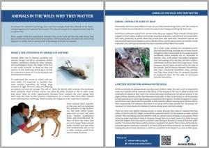 factsheet-wild-animals