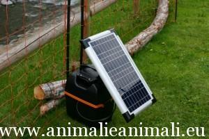 Accessori per animali archivi for Recinto elettrico per capre
