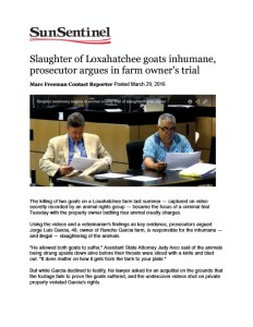 florida animal abuse case