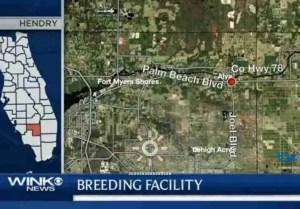 1007x704xmonkey-breeding-map.jpg.pagespeed.ic.jLWaIm6YQ2