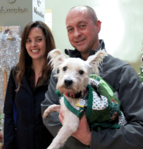 Beauregard, a two-year-old West Highland terrier, adopted by Clint Bruton and Tammy Fields of Portland. Beauregard was the 11,000 adoption from the Oregon Humane Society in 2015. (OHS photo)