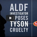 Why did the Animal Legal Defense Fund go undercover?