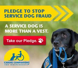 Canine Companions for Independence meme