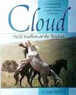 Cloud, WIld Stallion of the Rockies