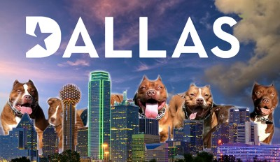 Dallas pits skyline