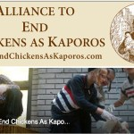 Culturally Rationalized Forms of Chicken Sacrifice:  The Kaporos Ritual & the Chicken Project