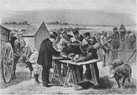 Louis Pasteur at work.