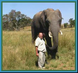Zimbabwe Conservation Task Force founder Johnny Rodrigues & elephant. (ZCTF photo)