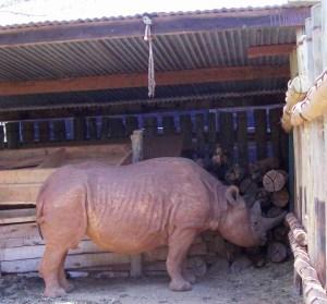 This old rhino is safe at the David Sheldrick Trust wildlife orphanage at Nairobi National Park. (MC)