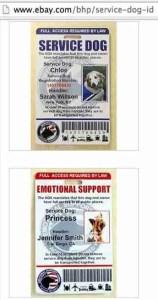 Service Dog ID's