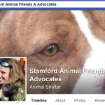 """The Facebook page for Stamford Animal Advocates shows both former shelter manager Laurie Hollywood (inset) and Tigger, a pit bull deemed """"unadoptable"""" by Stamford city officials."""