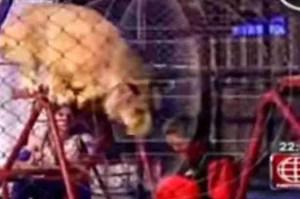 Monaco Circus lion pounces  Roxana Guevara Huaraca,  32,  on August 14,  2014.  (Facebook)