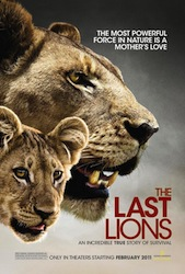 The_Last_Lions