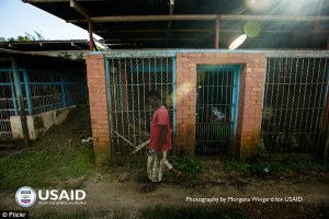 USAid photo of the abandoned Vilab II compound.
