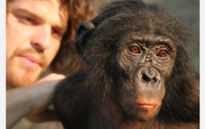 Brian Hare with bonobo Tembo,  who was returned to the wild after use in non-invasive intelligence research.   (Photo by Vanessa Woods, Department of Evolutionary Anthropology, Duke University)