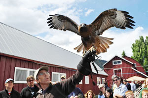 An owl demonstration at the Teton Raptor Center.  (TRC photo)