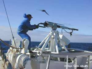 Harpoon gunner,  in photo distributed by the pro-whaling High North Alliance.