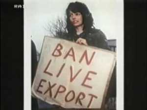 Jill Phipps, anti-live export protester who was killed by a truck in February 1995.