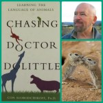 Chasing Doctor Doolittle:  Learning the Language of Animals
