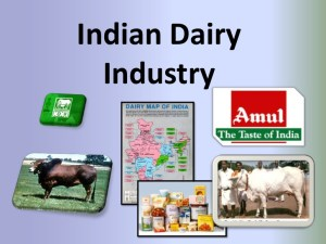 indian-dairy-industry-1-728