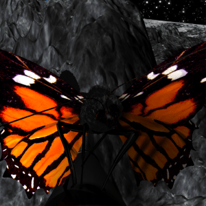 Animated Visions Production Moon on Butterfly render 001_0000 (0-00-08-15) (2)